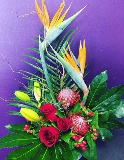 The Tropical arrangement